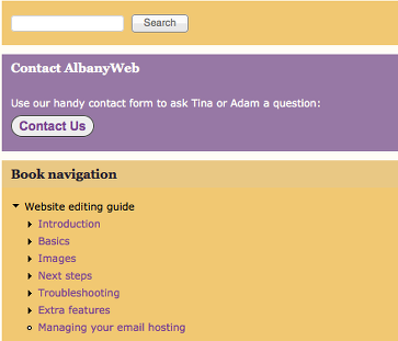AlbanyWeb offers online support via a custom editing guide